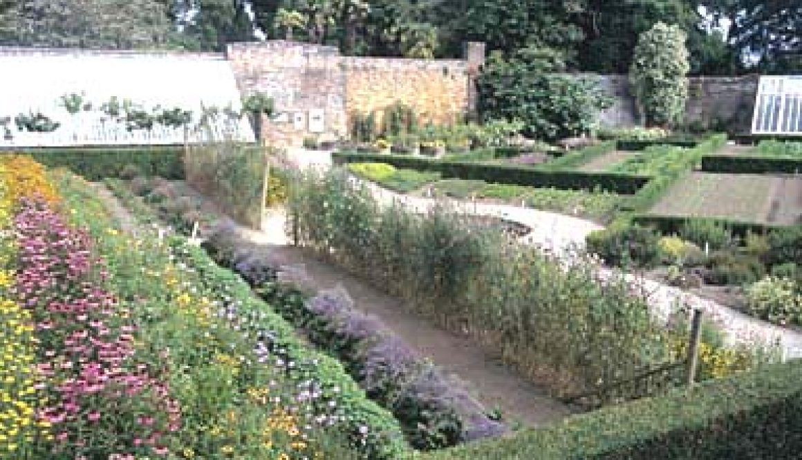 The-Lost-Gardens-of-Heligan-the-inspiration-for-the-Summerhayes-novels