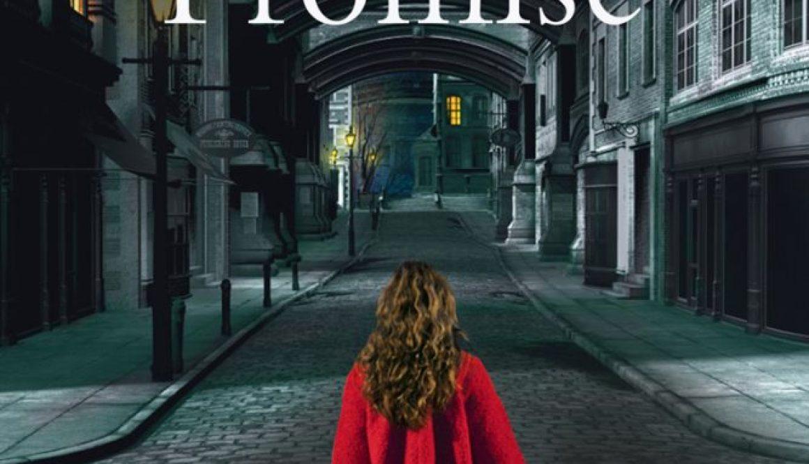 The Dangerous Promise merryn allingham